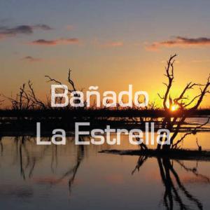 Bañado-04